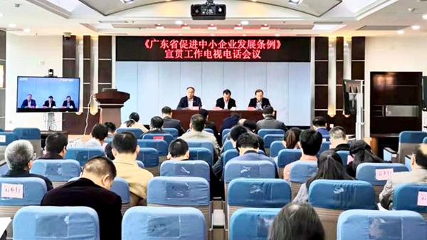省工业和信息化厅召开《广东省促进中小企业发展条例》宣贯工作电视电话会议_600.jpg